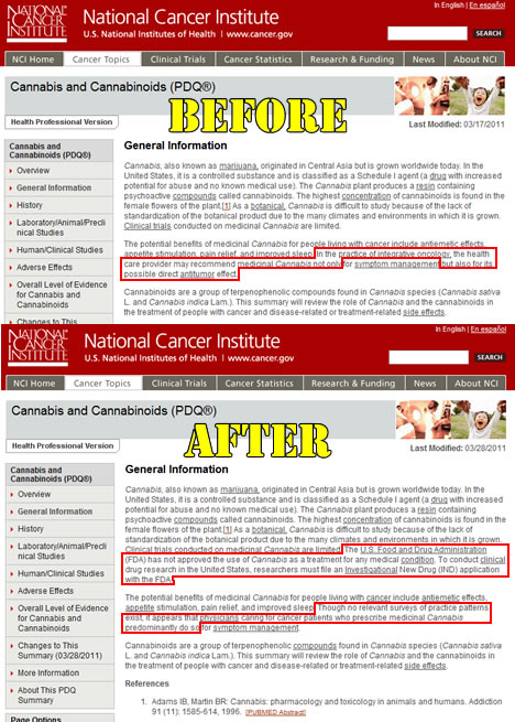 """National Cancer Institute scrubs """"anti-tumoral effect"""" of cannabinoids from website"""